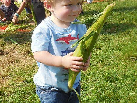 harvestfest17-1