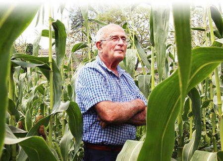 hero-steve-corn
