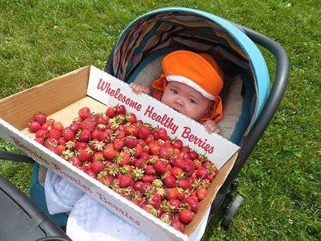 strawberryfest2015-4