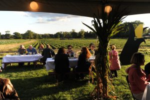 tables over fields