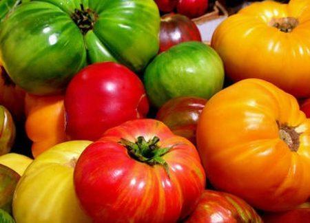 tomatopics